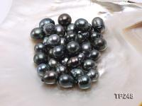 14x16mm Black Teardrop Loose Tahitian Pearls  TP248