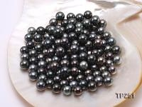 11-12mm Black Round Loose Tahitian Pearls  TP251
