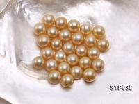 13-14mm Golden Round South Sea Pearl STP036