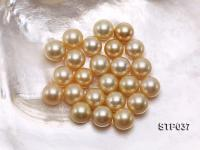14-15mm Golden Round South Sea Pearl STP037