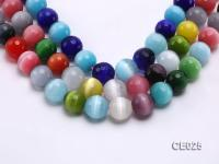 Wholesale 15.5mm Round Colorful Faceted Cat's Eye Beads Loose String CE025