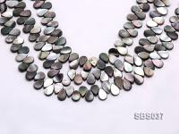 Wholesale 9x13mm Drop-shaped Black Seashell Pieces Loose String SBS037