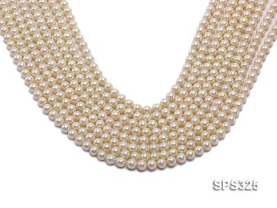 Wholesale 6mm Round Golden Seashell Pearl String SPS325 Image 1