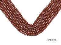 Wholesale 6mm Round Coffee Brown Seashell Pearl String SPS333