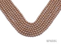 Wholesale 6mm Round Champagne Seashell Pearl String SPS334