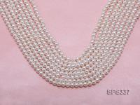 Wholesale 5mm Round White Seashell Pearl String SPS337