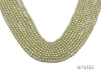 Wholesale 5mm Green Round Seashell Pearl String SPS338