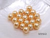 13-14mm Golden Round South Sea Pearl  STP043