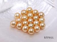 14.5-15mm Golden Round South Sea Pearl  STP044
